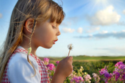 Аллергическая реакция на цветущие растения - причина ринофарингита