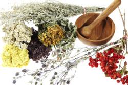 Народные средства при лечении слизистой носа