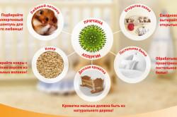 Основные аллергены, вызывающие отек носоглотки