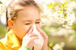 Аллергия у ребенка - причина кашля