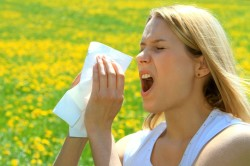 Влияние аллергического ринита на появление фронтита